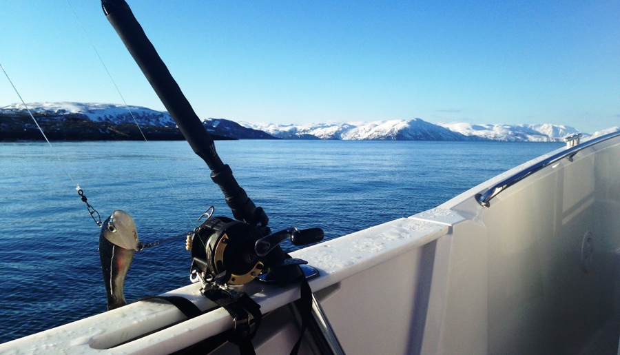 Fishing in the Arctic