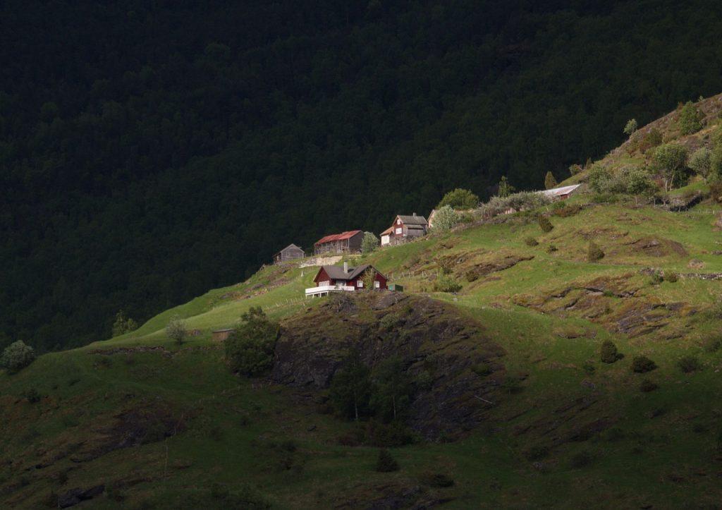 Flåm houses