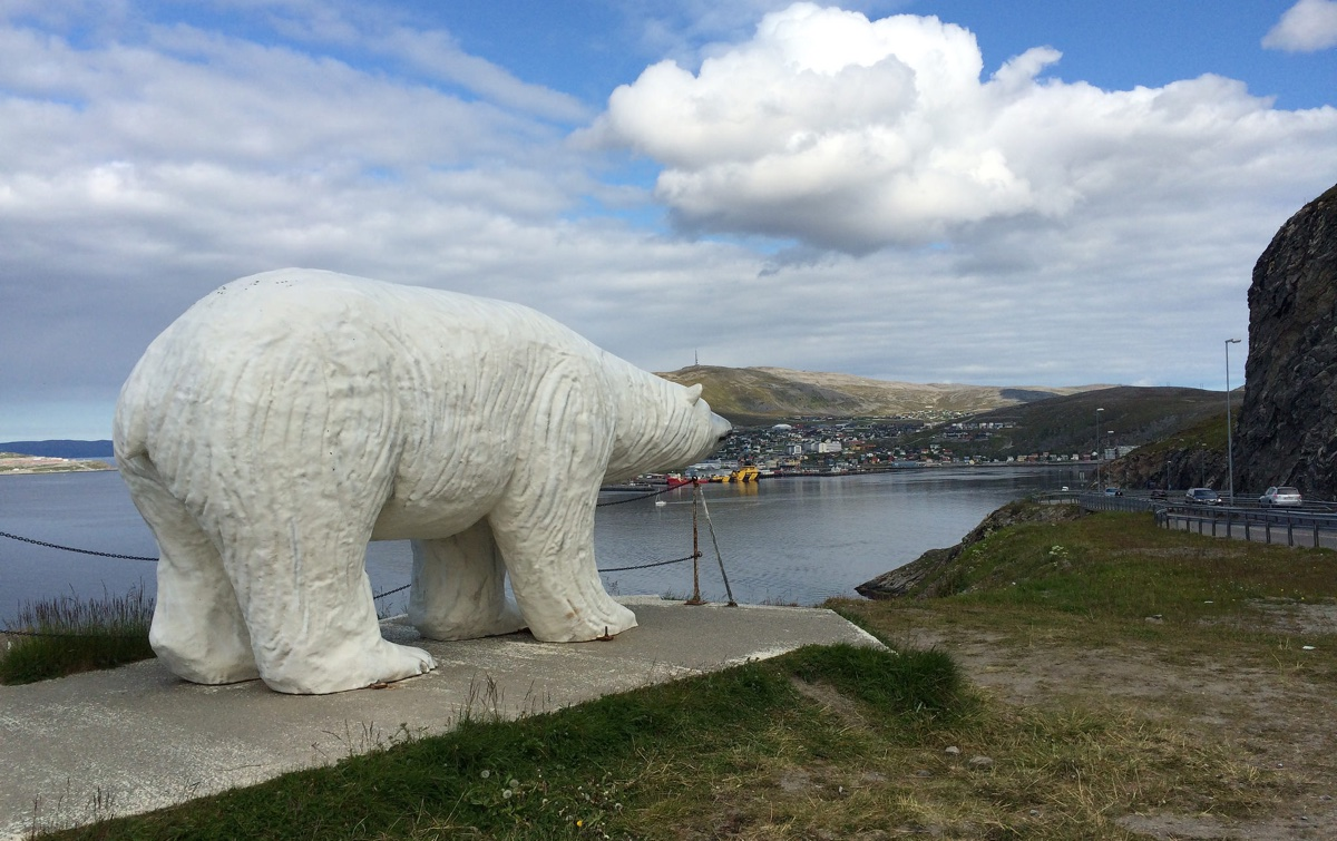 Hammerfest polar bear