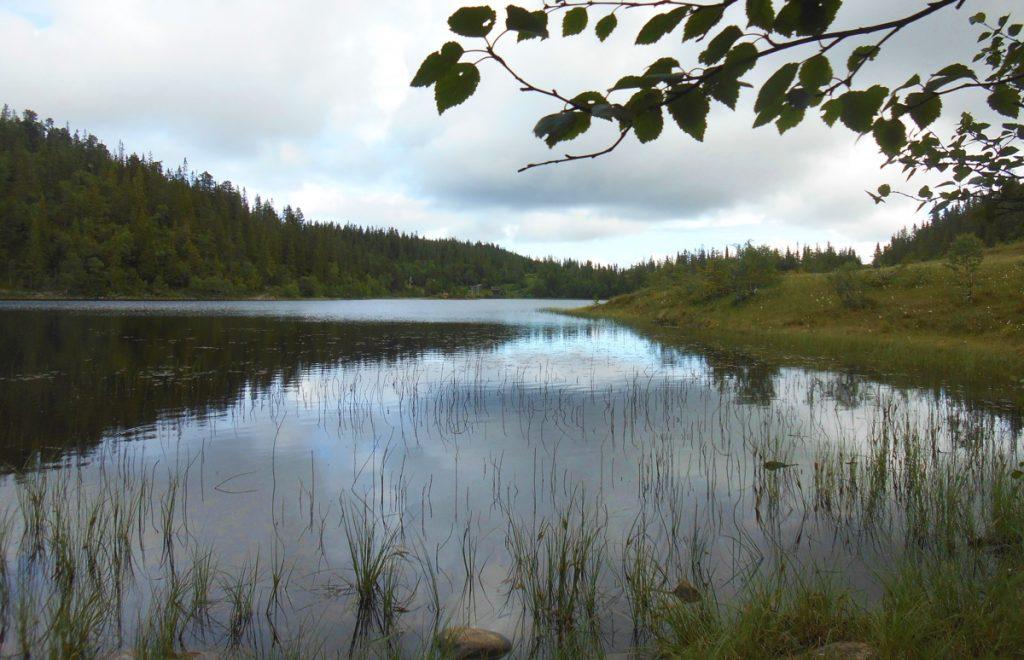 Vintervatnet Trondheim